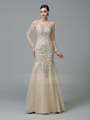 Sheath/Column Long Sleeves High Neck Applique Net Floor-Length Dresses