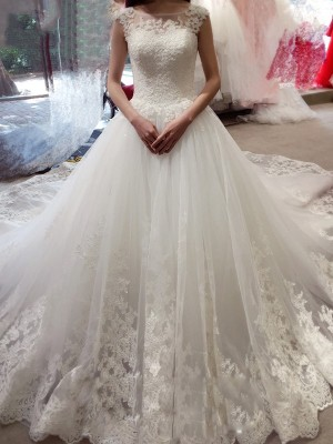 Ball Gown Bateau Sleeveless Tulle Applique Chapel Train Wedding Dresses