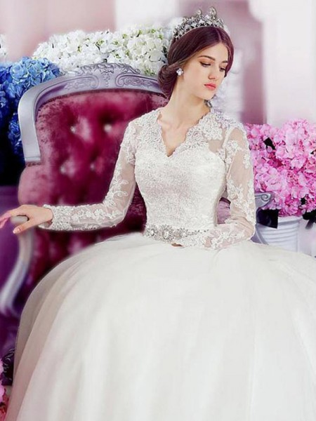 A-Line/Princess Long Sleeves Cathedral Train V-neck Applique Tulle Wedding Dresses